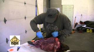 Puma SGB Trophy Care Knife Set Review Outdoor Quest TV