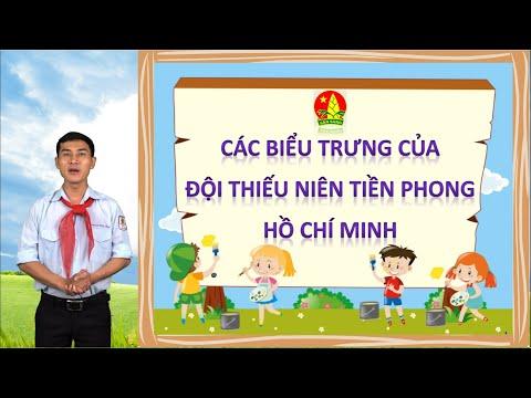 Các biểu trưng của Đội Thiếu niên tiền phong Hồ Chí Minh