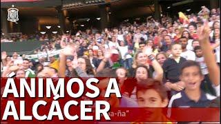 El cántico para Alcácer del estadio del Betis | Diario As