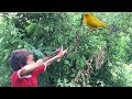 Amazing Boy Use Slingshot-Boy Shot Many bird Near His Village-Slingshot Shooting