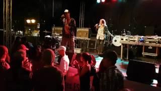 Der Wolf - Gibts doch garnicht LIVE auf dem Essen Original 2016