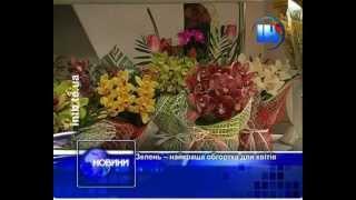 Вартість квітів(Тюльпани, орхідеї, іриси, маргаритки, гербери і, безперечно, троянди -- ці квіти користуються неабиякою попул..., 2013-03-07T17:02:42.000Z)