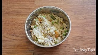 Healthiest Homemade Dog Food with Ground Beef Recipe
