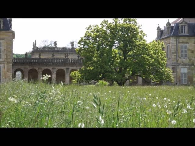 Printemps / Abbaye de Trois-Fontaines