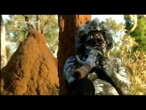 DR PETROS KATTOU OSTEOPATH, COOKING AUSTRALIAN CUISINE TV