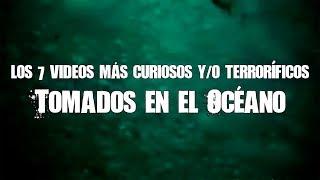 7 videos más curiosos y (terroríficos) del océano #SharkWeek