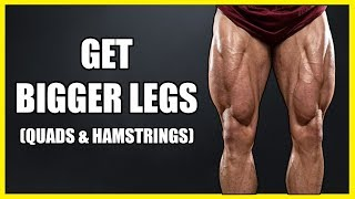 How To Get Bigger Legs (WARMUP) | Warm Up Exercises Before Workout
