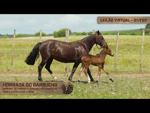Lote 04 - Hornada do Garrucho