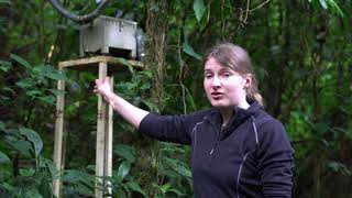 The role of citizen science in monitoring water towers in Kenya: A technical overview