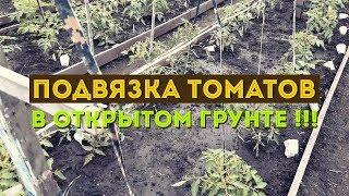 Подвязка томатов крупноплодных, высокорослых сортов!!!