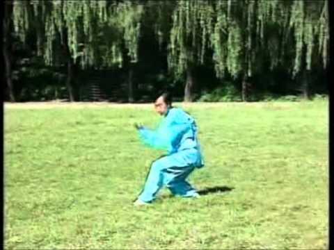 Professor Kung Ge Wu Bagua form