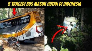 5 BUS Nyasar Masuk Hutan di Indonesia