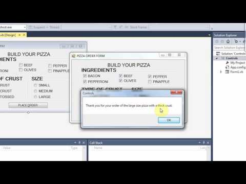 VISUAL BASIC VIDEO 8 CONTROLS CHECKBOXES RADIO BUTTONS GROUPBOXES WITH CODE