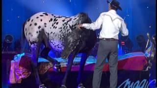 Tony Hocheger -  Le cheval - LE PLUS GRAND CABARET DU MONDE