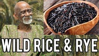 Dr Sebi Talks Wild Rice And Rye Benefits