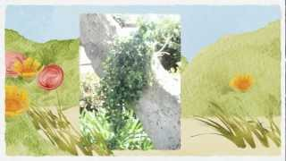 Artificial Ivy Wall - Gorgeous Artificial Ivy Plants Wall Call (858) 525-2251