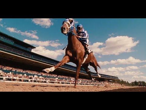 一匹不被看好的小马,却在一个主妇的培养下,创造了赛马界的神话
