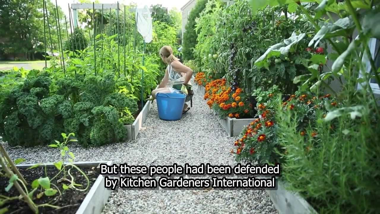 Drummondville's front yard vegetable garden - YouTube