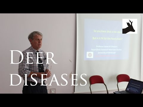 Urban deer injuries and deer diseases - Prof J. Simpson - Urban Deer Day 2014