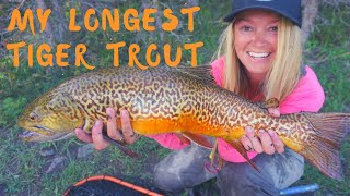 The Longest Tiger Trout I've Caught?? Fly Fishing for MONSTER Tigers with Chunky Trout Outfitters