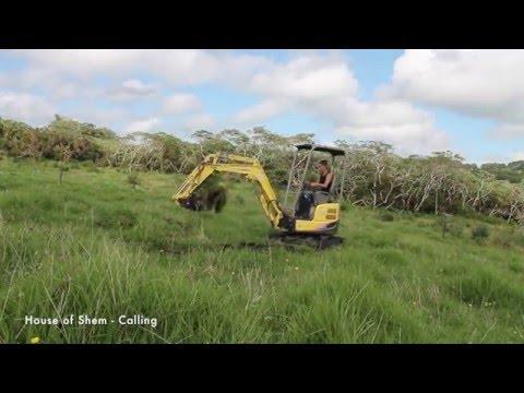 Kiwi Going Off Grid