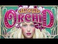 White Orchid Casino Game: Four Orchid Bonus - YouTube