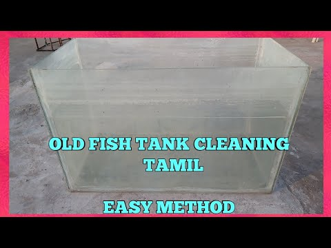 Fish Tank Cleaning Tamil