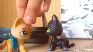 НОВЫЙ ПЭТ?×_×. Чёрный кот 1-я серия