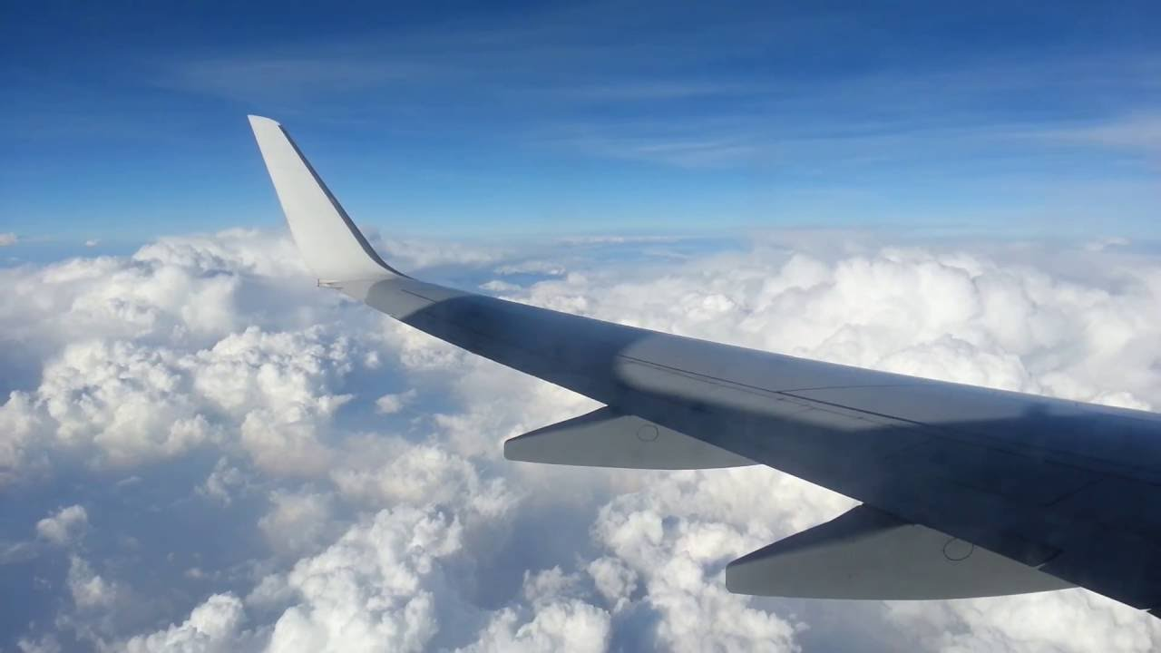my first flight experience Book a flight search and book flights conveniently my booking cancel and rebook online book your seat and meal preferences flight schedules check the daily or weekly schedule for the required sectors.