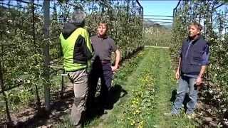 Girovagando con la famiglia Toller, coltivatori di mele a Caldonazzo.