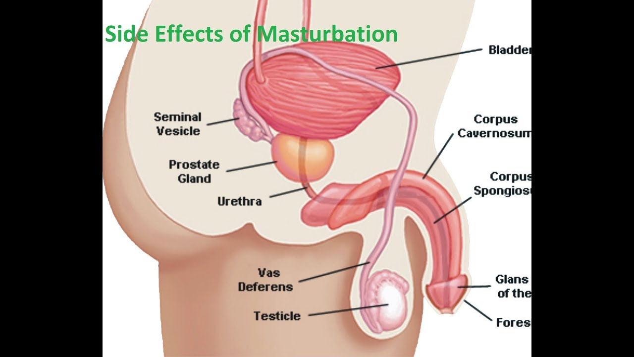 Effect of masturbation on prostate