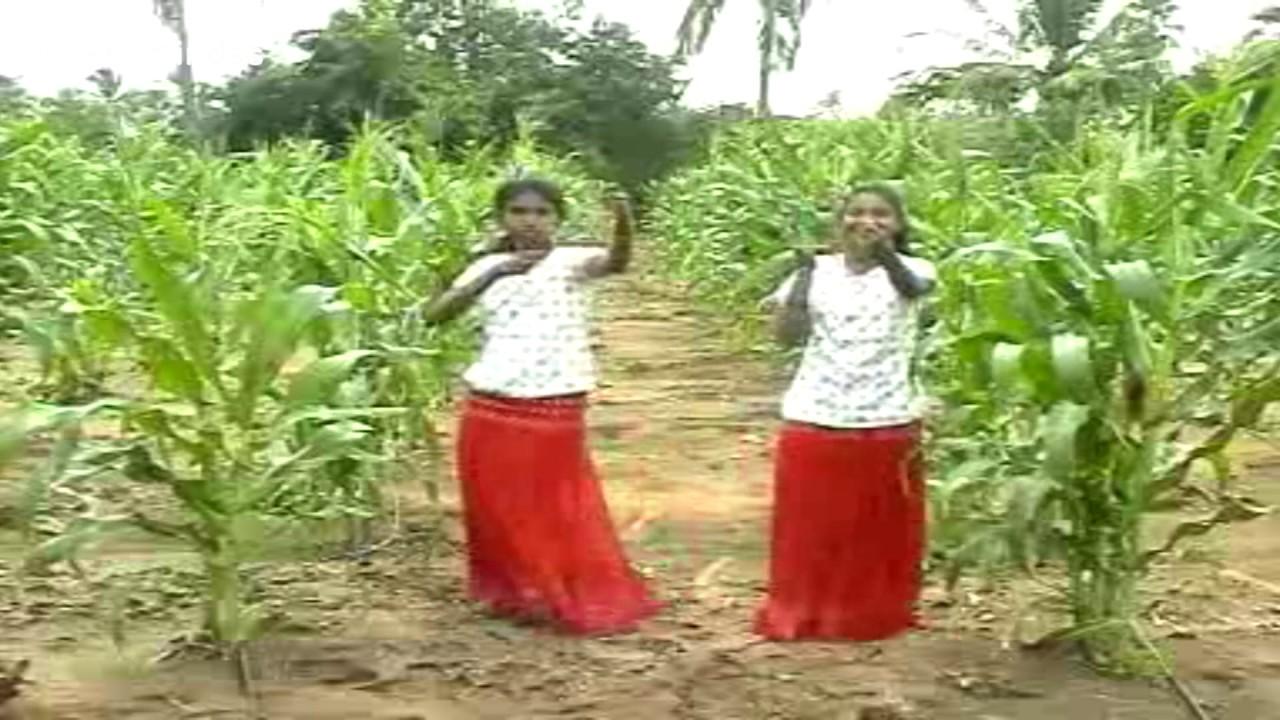 பாரு பாரு சின்ன தாவீது – Paaru Paaru Chinna Thavithu