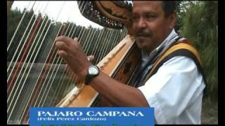 Download PAJARO CAMPANA  YVES RAKOTO Mp3 and Videos