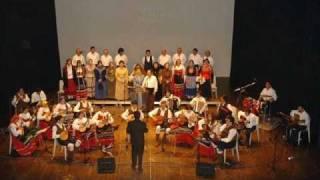 Orquestra Típica Albicastrense - Fantasia Folclórica