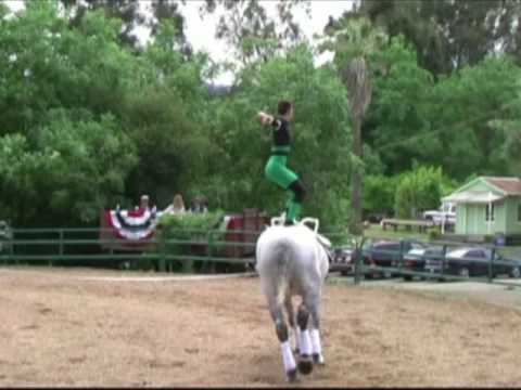 Horse vaulting  Freestyle