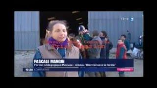 FERME ROUVAU - reportage France 3