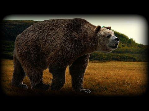 Extinct Animals - Short-Faced Bear