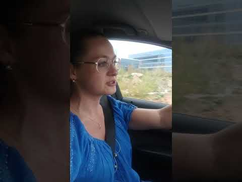 Шалатон Елена (Алена) Викторовна. Дорога в Префектуру. Дела общедомовые.