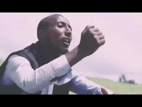 Download Gotaa oromoo kamali hebboo