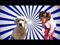 Ebru Gündeş - Yaparım Bilirsin - YouTube