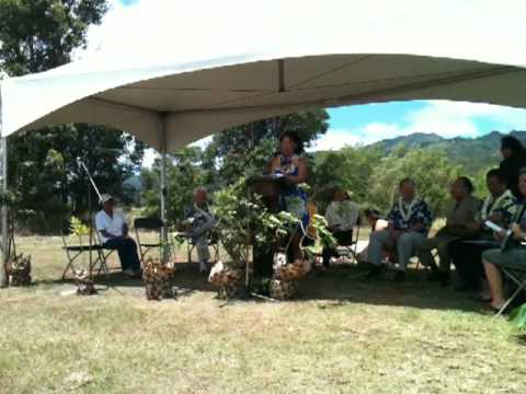 Trust for Public Land Hawaiian Islands Director Lea Hong