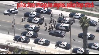 police chase chicago,los angeles, police Dogs attack