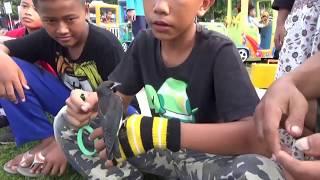 Video Hebat Sekali Anak Anak Ini Ahli Melatih Burung Kekep Babi download MP3, 3GP, MP4, WEBM, AVI, FLV Juni 2018