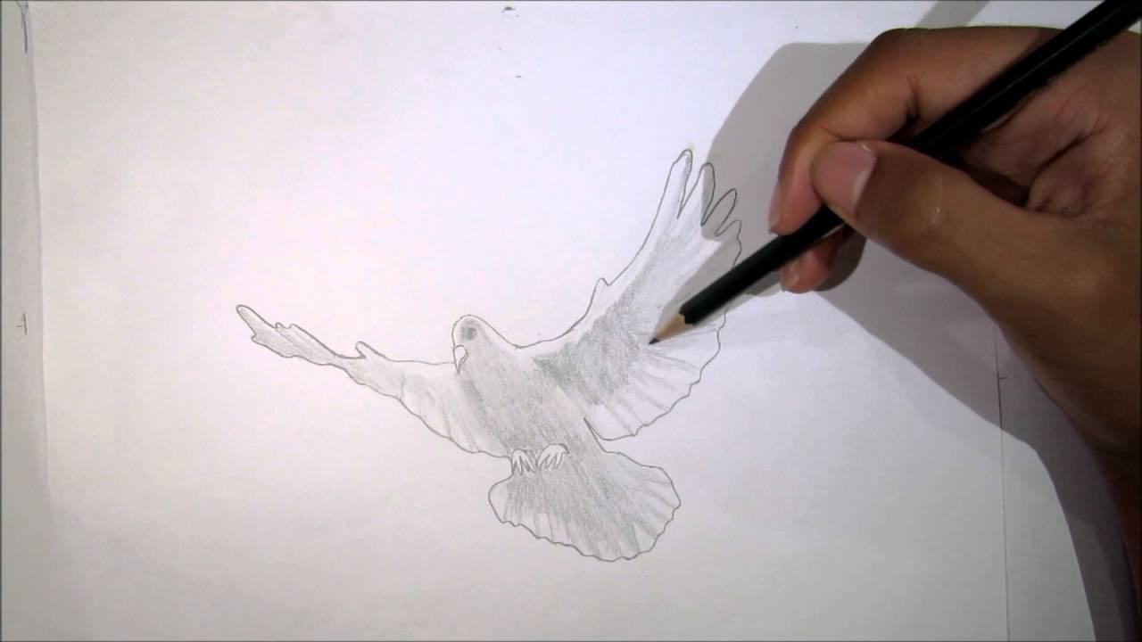 Pomba Simbolo Do Espirito Santo Desenho Rapido Youtube