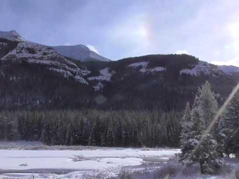 Yellowstone Lamar Canyon wolf pack howling