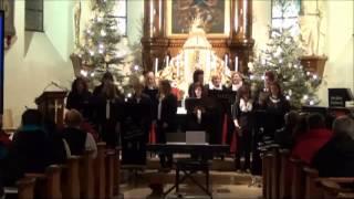 """Freude schöner Götterfunken - Chor """"The Voices"""""""