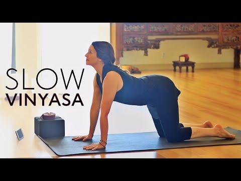 45 Minute Hatha Yoga Flow (Slow Vinyasa)