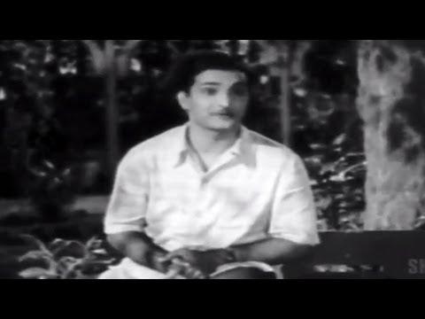 Missamma Movie  Avunante Kaadanile  Song  NTR, ANR, SVR, Savitri, Jamuna