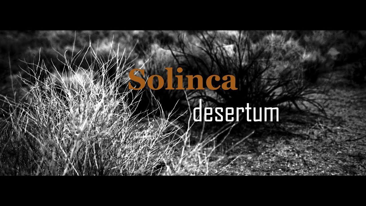 Solinca Desertum - clip officiel