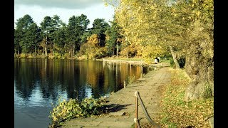 Places to see in ( Sutton Coldfield - UK )